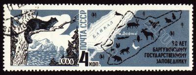 50-year anniversary of Barguzinsky reserve on post stamp