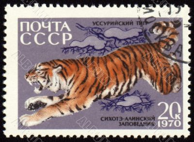 Jumping tiger on post stamp