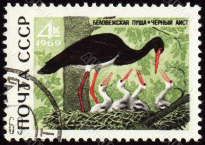 Black stork on post stamp