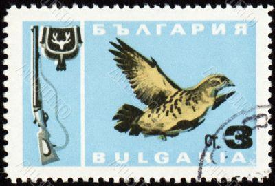Fowl bird on post stamp