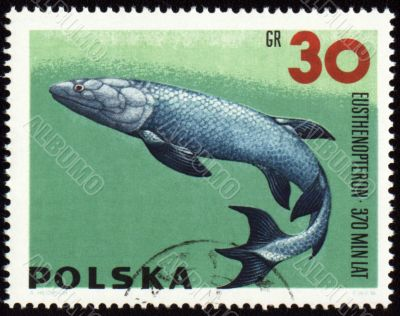 Prehistoric fish Eusthenopteron on post stamp