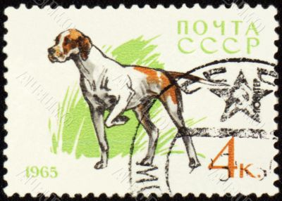 Pointer on post stamp