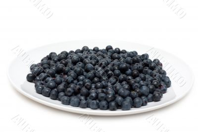 Plate with whortleberry