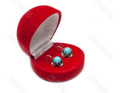 Red box with earring