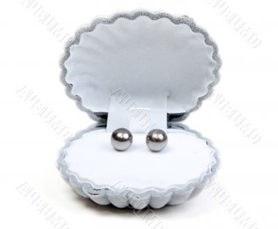 Earrings in small box and necklace