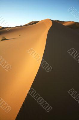 Shadow Sand dune