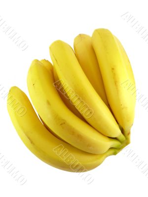 Delicious bananas isolated on white background