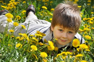 The boy lies in the dandelions