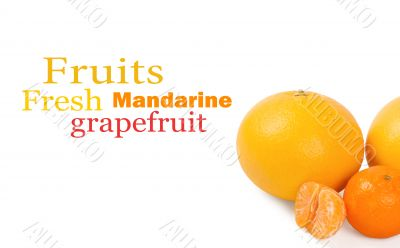 Fresh citrus fruit on a white background