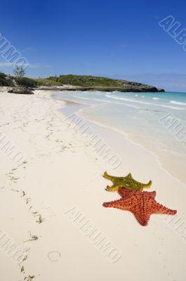 tropical cuban beach