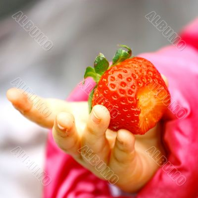 Child Tasting Strawberry Fruit