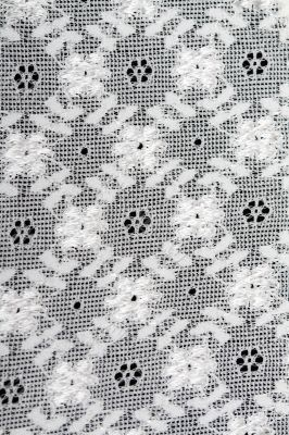 Background of white lace