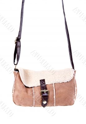 brown bag with fashionable women`s fur