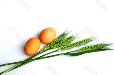 Green wheat ears and eggs