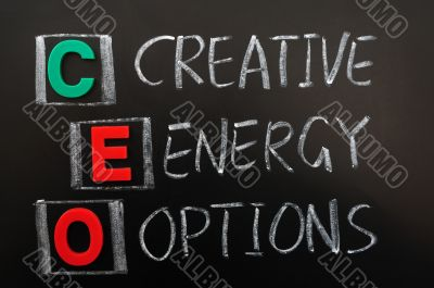 Acronym of CEO - Creative Energy Options