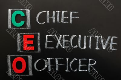 Acronym of CEO - Chief Executive Officer