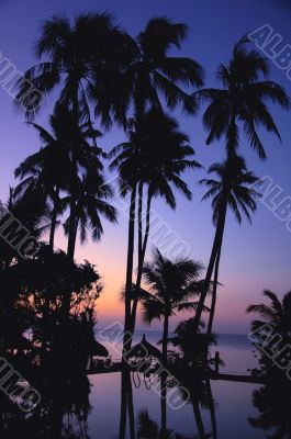 Landscape on the beach