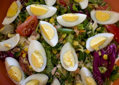 Spring salad of tomatoes, corn, scotch kale, eggs dressed with o