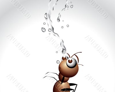 Ant Character