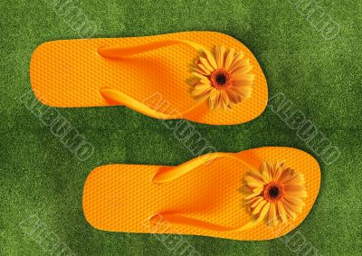 Colorful Flip Flops on green grass