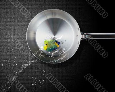 Angelfish jumping to frying pan