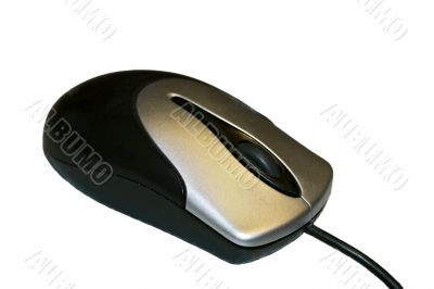 Black and white computer mouse isolated on the white background
