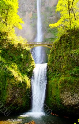 Multnomah falls and bridge in the morning sun light