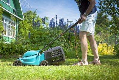 Man mowing the lawn in the yard