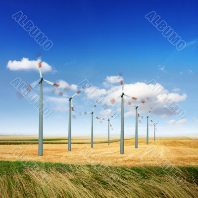 Wind turbines generate energy