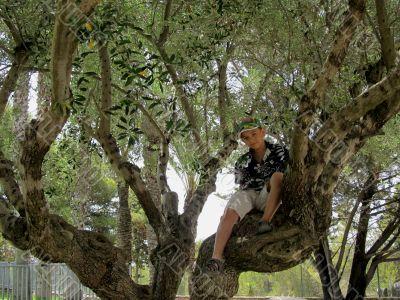I am almost Tarzan in the jungle of Europe