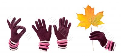 A collage of warm gloves with autumn maple leaf
