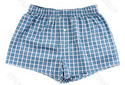 Men`s plaid shorts