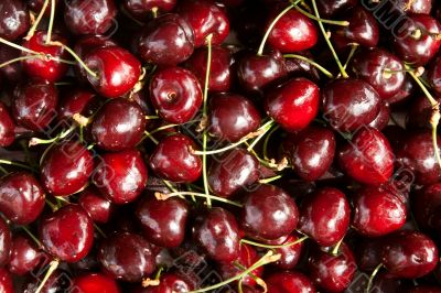 background of black cherry