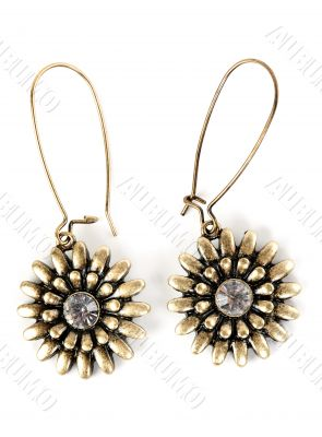 a pair of women`s earrings with precious stone