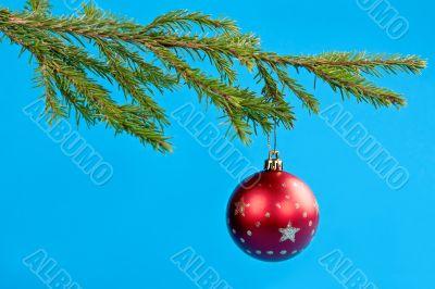 fir branches and Christmas ball