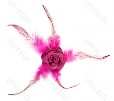 Pink rose fabric with feathers