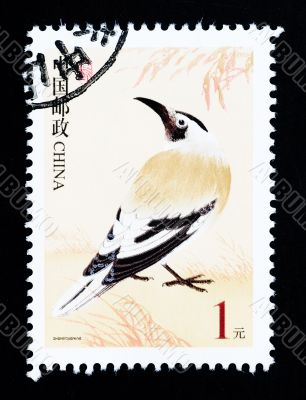 CHINA - CIRCA 2002: A Stamp printed in China shows image of a wild bird, circa 2002