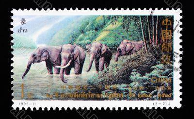 CHINA - CIRCA 1995: A Stamp printed in China shows the Thai elephants , circa 1995
