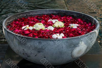 Rose petals in the vase