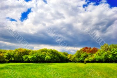 cloudy sky over the green forest