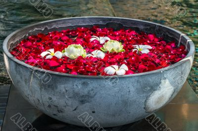 Rose petals, lotos ans plumeria flowers in the bowl