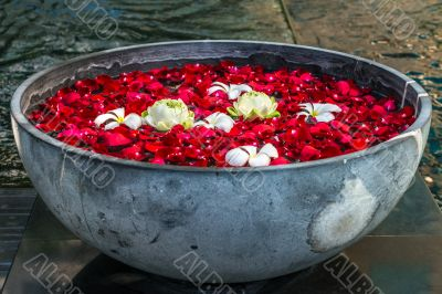 Rose petals, lotos and plumeria flowers in the bowl