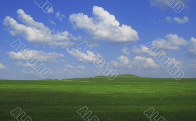 Green field and blue sky and white clouds