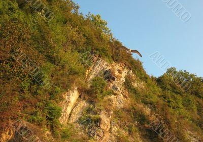 Steep rocky cliff