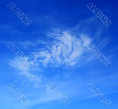 Image of summer fluffy sky