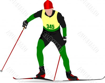 Ski runner colored silhouettes. Vector illustration