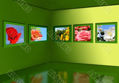 Gallery of flowers.