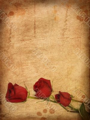 Grunge paper with red roses.