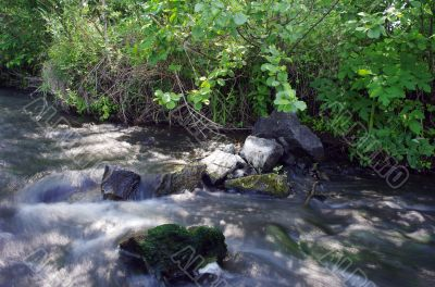 River and stone. Composition of the nature