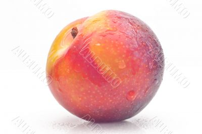 Bright ripe plum on a white background